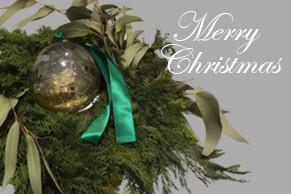 エスティック インアウトリビング青山 クリスマス